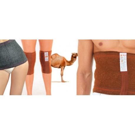 Suņu vilnas ķermeņa korsete vai locītavu josta